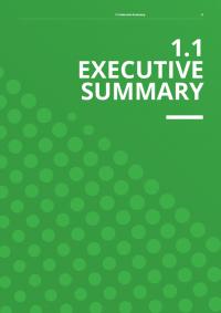 1.1 Executive Summary